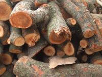 制作工程(木)